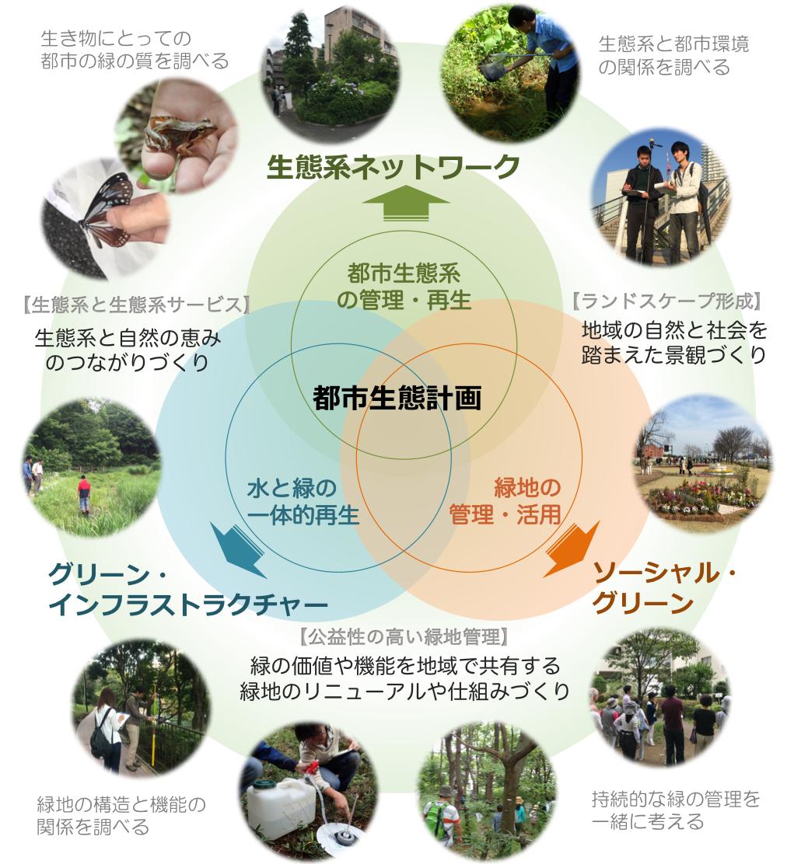 横田樹広准教授の研究